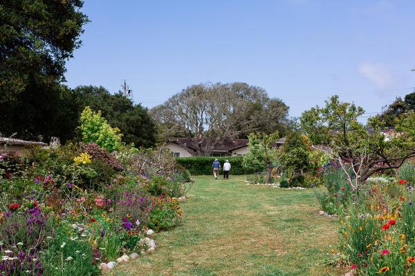 Garden Party cover image